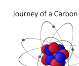 BIO.1.3: Episode 2 - A Ride on the Carbon Cycle - Journey of a Carbon Atom