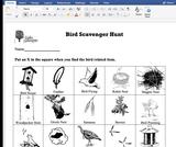 Ogden Nature Center: Bird Scavenger Hunt