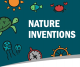Nature Inventions Lesson Plan 2.2.4