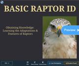 Basic Raptor ID