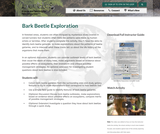 Bark Beetle Exploration