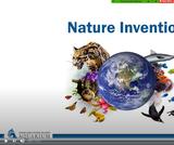 Nature Inventions: 2nd Grade Webinar