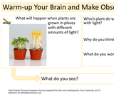1.2.1 Plants & Sunlight Student Science Experience