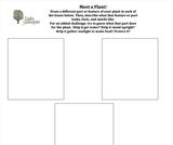 Ogden Nature Center: Meet a Plant Worksheet