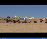 Discovery Road: Horse Power