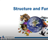 Nature Interventions: Structure and Function Webinar