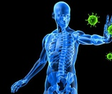 Immune System Responses Adobe Spark Video