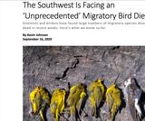 BIO.1.1: Episode 1 - Massive Migrations - Audubon Article BIO1.1