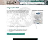 Fungi Exploration