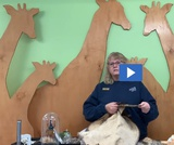 Build a Beaver Dam 2.2.2 & 2.2.4 - Instructional Video